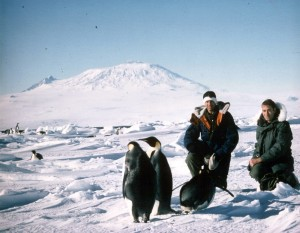 Check this out! Lieutenant Commander Lee Devendorf, as the Senior United States Meteorologist in Antarctica with Emperor Penguins. 1986-1987